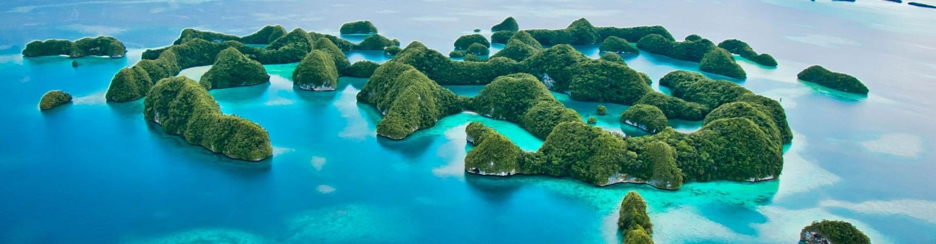 2 - Palau Liveaboard Dive Vacation September 2019