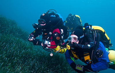 Dolphin Rebreather